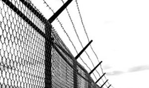 prikkeldraad hek
